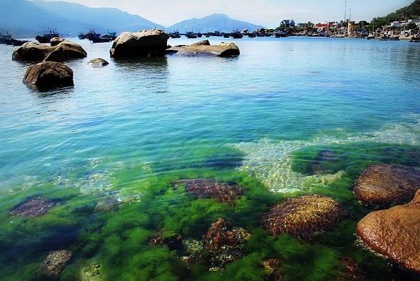 Tour du lịch Ninh Chữ 2N2Đ: đảo Bình Hưng