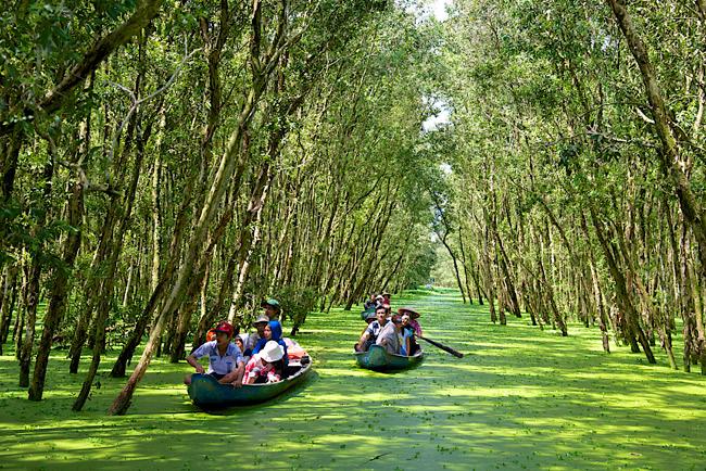 Tour du lịch Kiên Lương: Quần Đảo Bà Lụa - Khám Phá Rừng Tràm Trà Sư