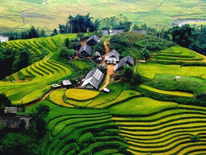 Top các địa điểm du lịch hấp dẫn nhất Việt Nam