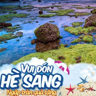 Tour du lịch hè Ninh Chữ - Bình Hưng 3 ngày 2 đêm