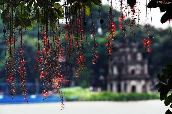 Du lịch mùa thu Hà Nội