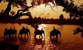 Du lịch Tây Nguyên