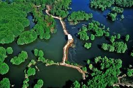 Đảo Cần Giờ nhìn từ trên cao
