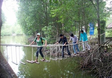 Cầu gỗ qua sông