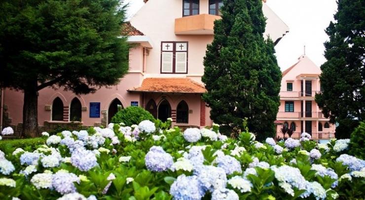 Hoa Tú Câu được trồng bên trong khuôn viên