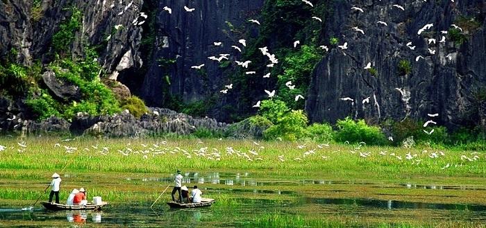 Khu bảo tồn thiên nhiên Vân Phong