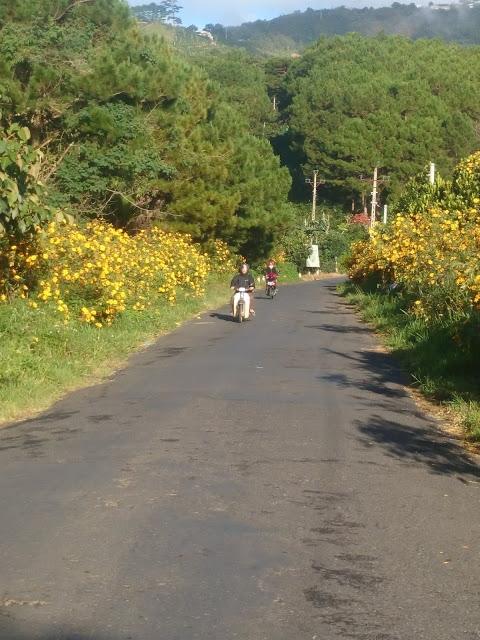 Cung đường đến với đồi chè Cầu Đất