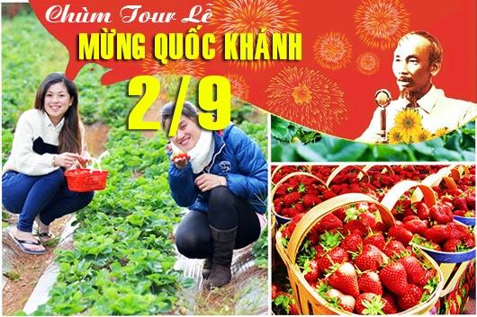 Tour du lịch Đà Lạt lễ Quốc Khánh 2/9/2019