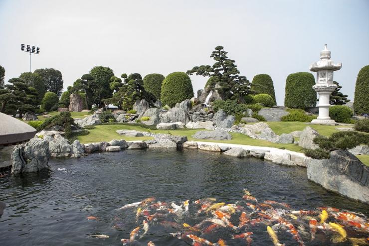 Quang cảnh công viên cá Koi