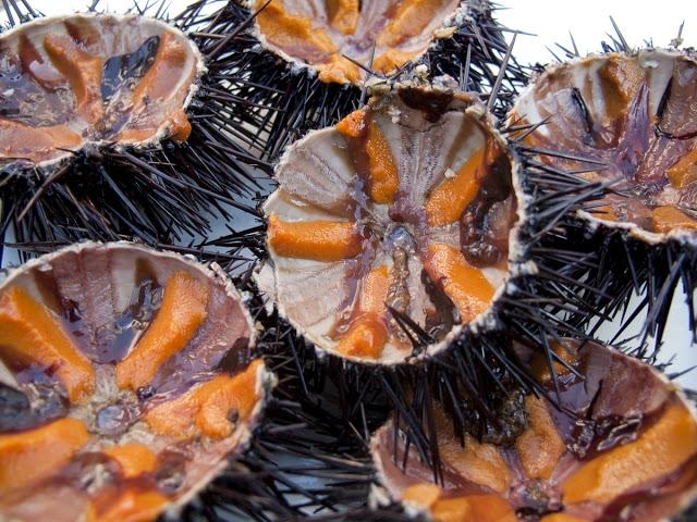 Nhum - món đặc sản của Phú Quốc
