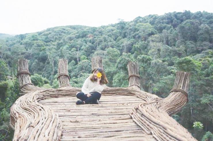 Tour du lịch Đà Lạt 3 ngày 3 đêm : Làng Hoa Vạn Thành - Hoa Sơn Điền Trang