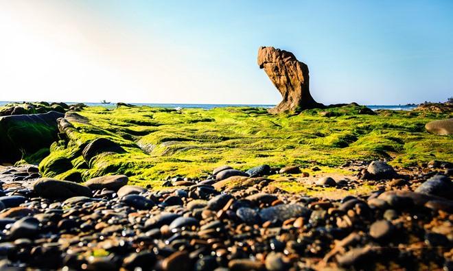 Tour du lịch Phan Thiết 2 ngày 2 đêm: Cổ Thạch Mũi Né