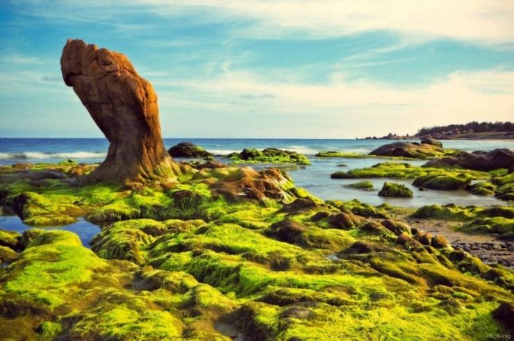 Tour du lịch Phan Thiết 2 ngày 2 đêm: Cổ Thạch - Mũi Né
