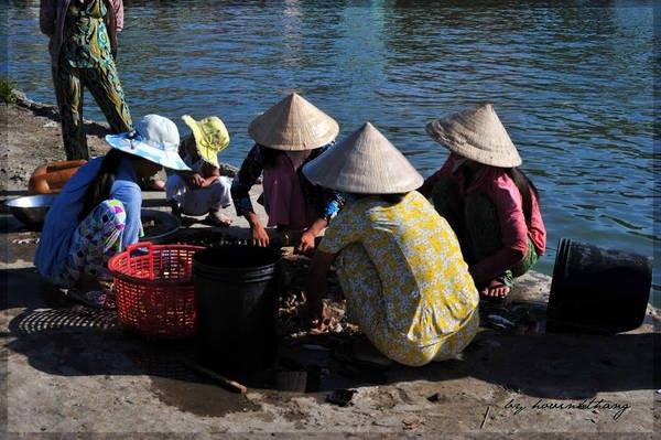 Hình ảnh phụ nữ miền biển lựa cá. Ảnh InternetHình ảnh phụ nữ miền biển lựa cá. Ảnh Internet