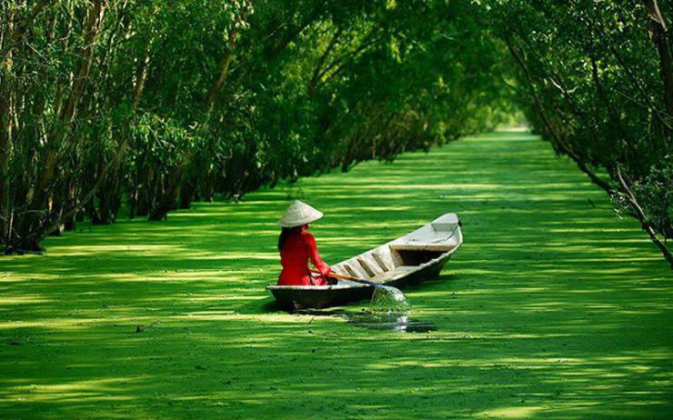 Chiếc xuồng ba lá chở cô em gái áo bà ba đội nón lá trên dòng nước rừng tràm Trà Sư mùa bèo nở. Ảnh Internet