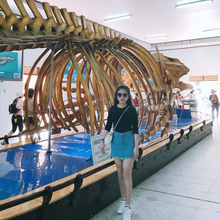Bộ xương cá voi lưng gù trong Viện hải dương học Nha Trang