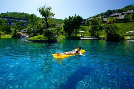 Thả mình trong bể bơi và hoà quyện cùng thiên nhiên