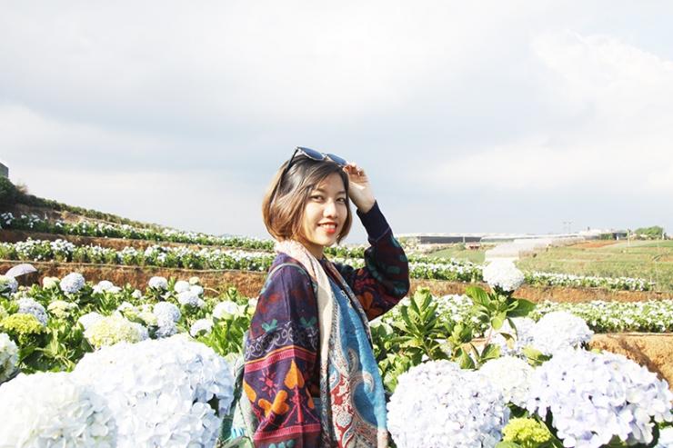 Tour du lịch Đà Lạt hè 2019: Khám Phá Vườn Dâu Thủy Canh