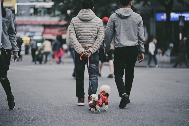 Phố đi bộ Hà Nội vào những ngày trời đông
