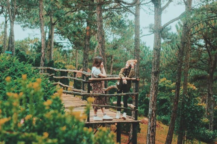 Lưu giữ khoảnh khắc đẹp tại Thung lũng Vàng Đà Lạt