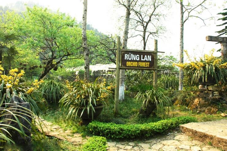 Vườn Lan Sa Pa