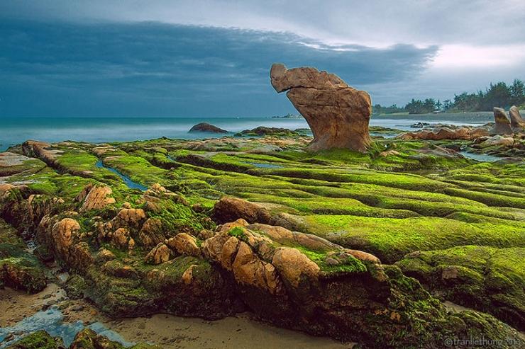 Giữa trung tuần tháng 3 là khi toàn bộ đá được bao phủ một lớp rêu xanh thật đẹp và độc nhất vô nhị.