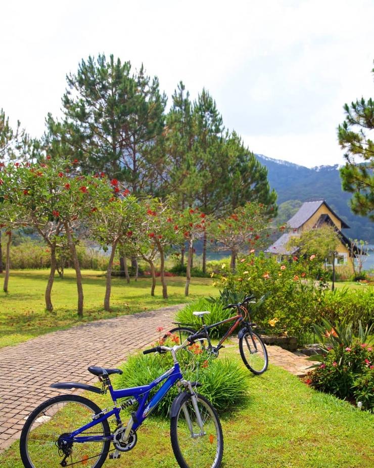 Đến với Bình An Village Đà Lạt, các bạn có thể đạp xe rèn luyện sức khoẻ xung quanh Resort