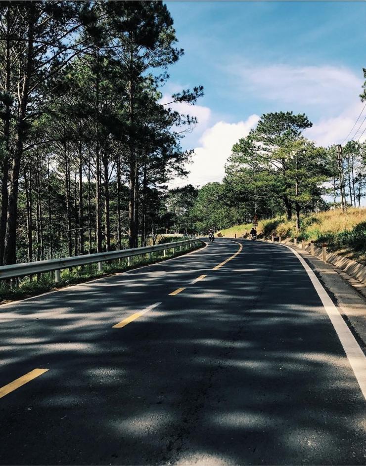 Cung đường đi đến đồi chè Cầu Đất