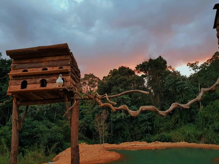 Căn nhà gỗ trên cây trong Hoa Sơn Điền Trang Đà Lạt