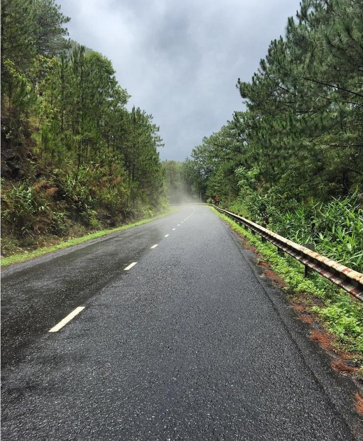 Con đường tuyệt đẹp đi đến Thung Lũng Vàng Đà Lạt