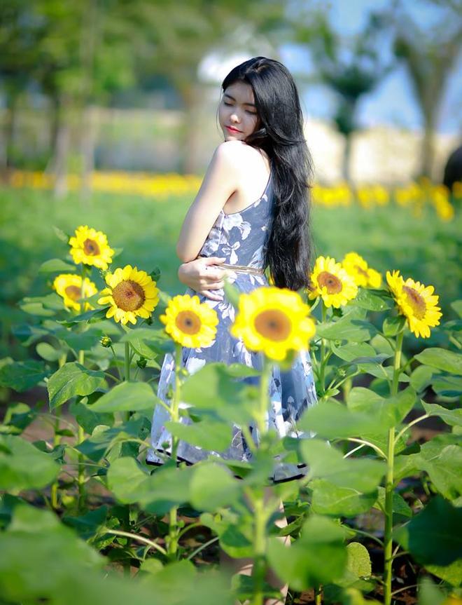 Checkin tại vườn hoa hướng dương tại Bửu Long, Biên Hòa - Đồng Nai