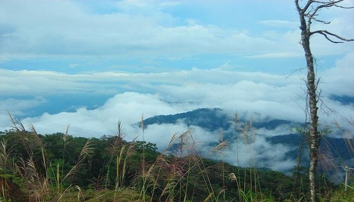 Sương mù trên đỉnh Hòn Bà