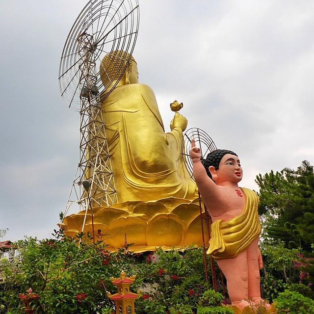 Bức tượng Phật bằng vàng cao 24m ngồi trên hoa sen ở Thiền viện Vạn Hạnh, đây là bức tượng Phật vàng lớn nhất Đà Lạt