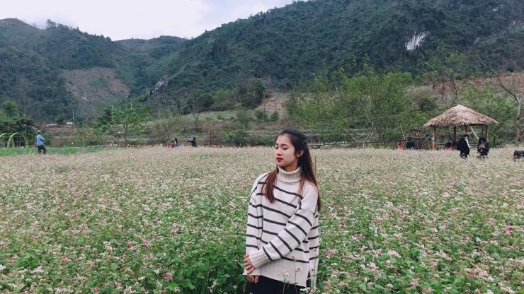 Tour du lịch Hà Giang 5 ngày 4 đêm: Ngắm Hoa Tam Giác Mạch - Cao Nguyên Đá