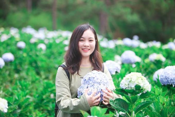 Vườn hoa cẩm tú cầu trong thung lũng tình yêu
