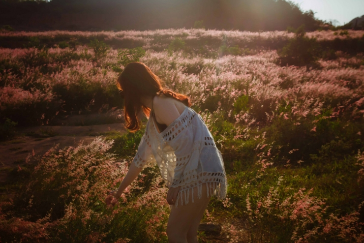 Checkin đồi cỏ hồng Bình Ba