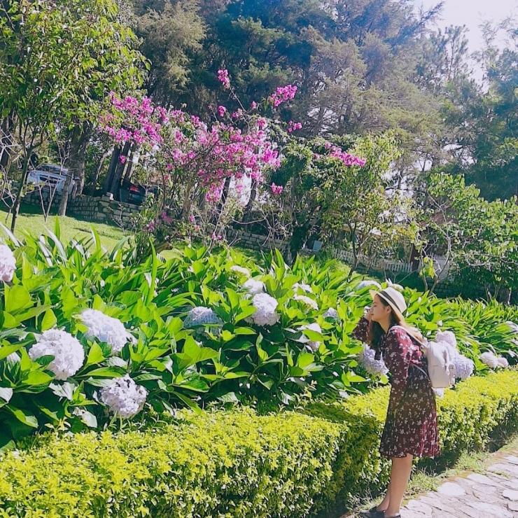 Tour du lịch Đà Lạt Vườn hoa thành phố KDL Lang Biang