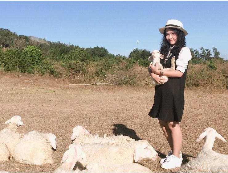 Tour du lịch Vũng Tàu: Suối nước nóng Bình Châu - Đồng Cừu Xứ Nghệ