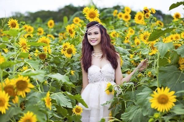 Chụp hình tại cánh đồng hoa hướng dương Mãn Đình Hồng