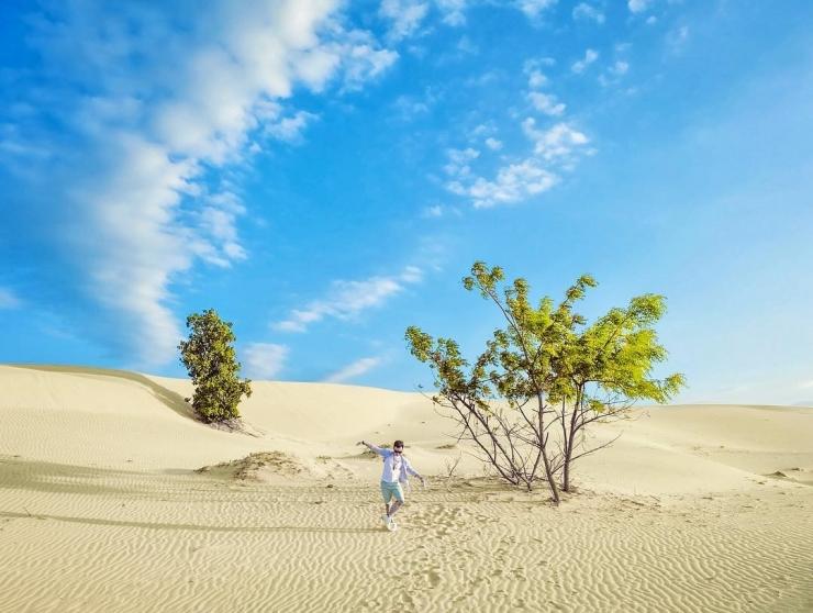 Khung cảnh thiên nhiên ở đồi cát Nam Cương lãng mạn và đầy thu hút