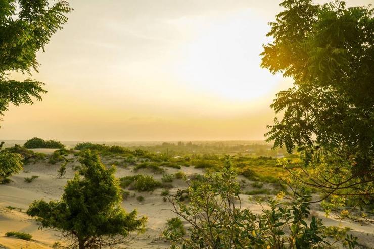 Bình minh trên đồi cát Nam Cương