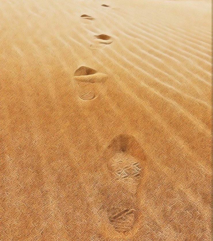 Bước chân in dấu trên đồi cát Nam Cương Ninh Thuận
