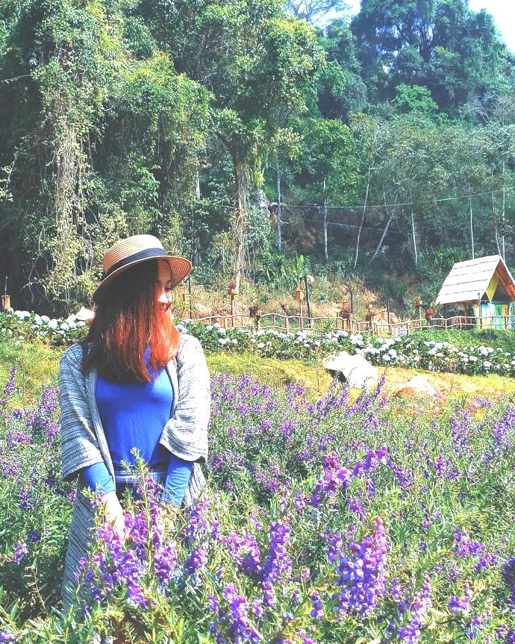 Chụp ảnh với cánh đồng hoa trong Hoa Sơn Điền Trang Đà Lạt