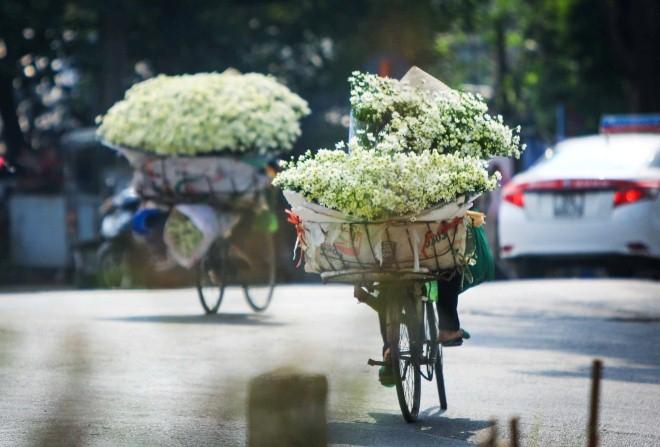 Hình ảnh hoa cúc mi trên những gánh hàng của những phụ nữ dọc phố