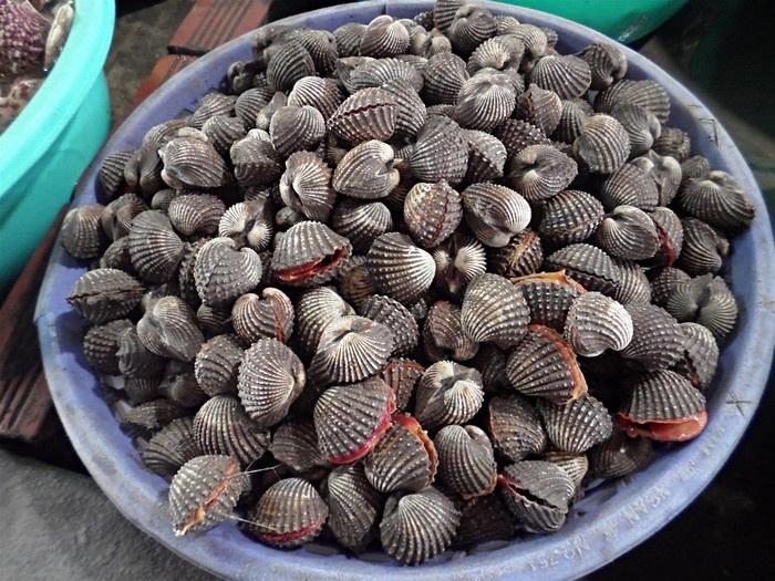 Sò huyết đầm Ô Loan - Món ngon của vịnh Xuân Đài Phú Yên