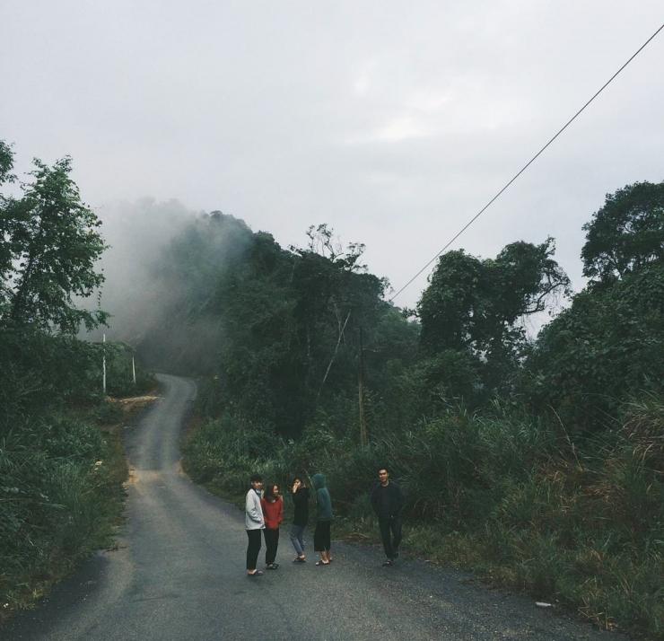 Trong rừng nguyên sinh Pơmu