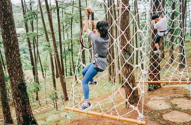 Trải nghiệm đu dây zipline xuyên rừng già tại Datanla High Rope Course