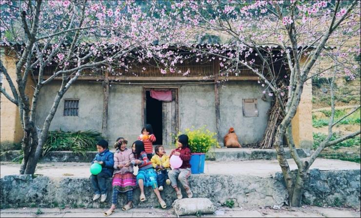 Sắc hồng từ những cây đào rực nở khắp thôn xóm vùng Sapa