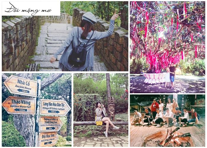 Tour du lịch Đà Lạt Tết Nguyên Đán 2019: Trải nghiệm Cầu Đất Farm