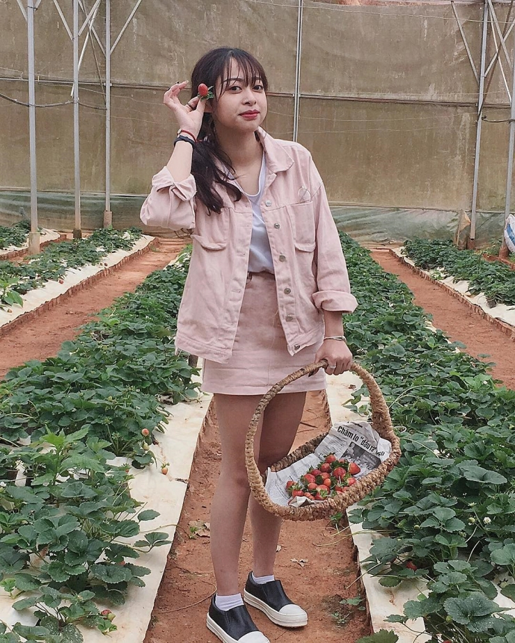 Chụp hình tại vườn dâu Nhật Đà Lạt